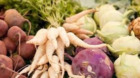 Plantebaseret mad